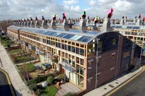 solar beats coal
