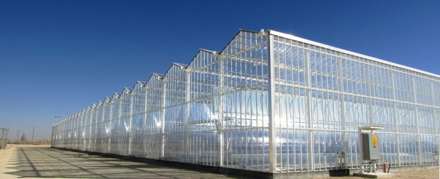 World-first 'solar-glass' developed in Perth hopes to make deserts bloom