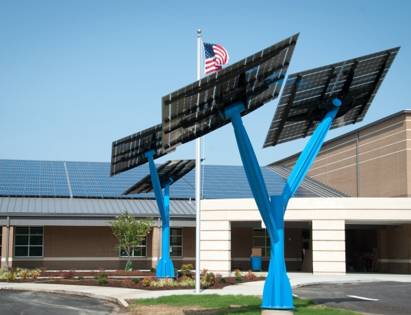 'Solar trees' sprout across Florida in push to promote solar energy